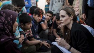 Angelina Jolie politikusnak áll?