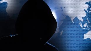 Lecsukták a hekkert, aki egy egész országban megbénította a netet