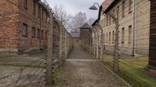 Látogatórekord Auschwitzban