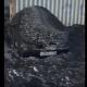 Fekete hó esik Szibériában – videó