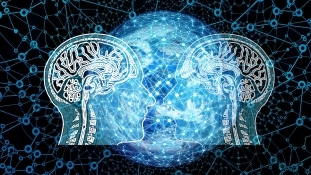 A nők agya 4 évvel fiatalabb, mint a férfiaké