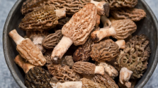 Nem élte túl: mérgező gombát evett a Michelin-csillagos étteremben