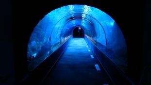 Üvegalagút a tengerben – hamarosan Horvátországban is!