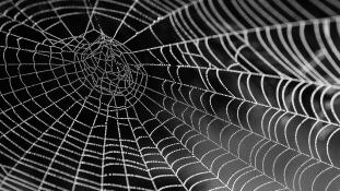 Pókselyemből készült mesterséges izommal lehetnek szupererősek a robotok