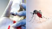 Malawiban megkezdik az oltásokat: új vakcina mentheti meg a gyerekeket a maláriától