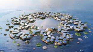 Oceanix: a projekt, mely megmentheti a víztől a part menti városokat
