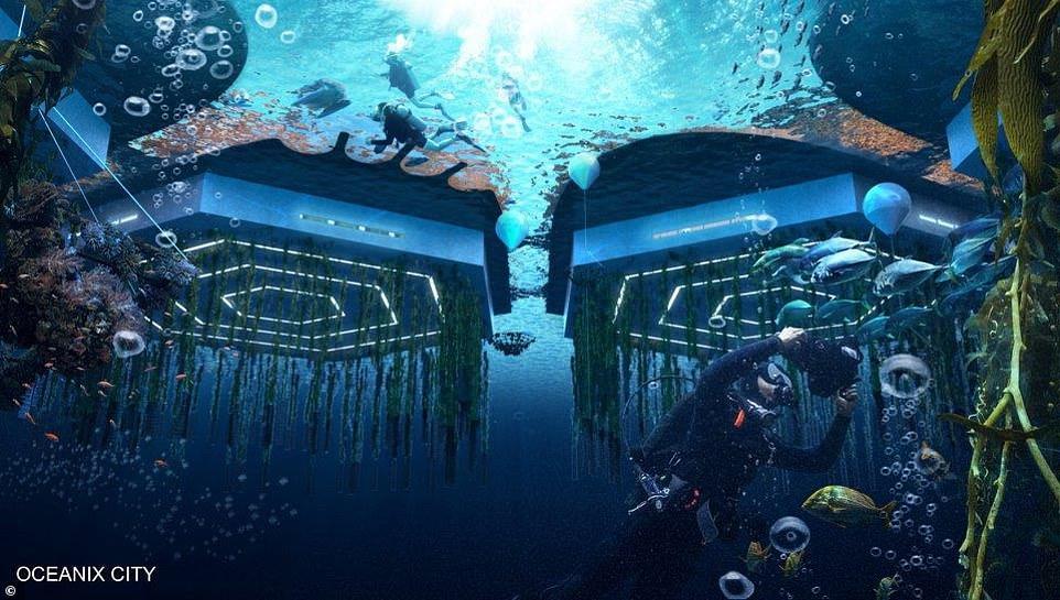 000ocean5