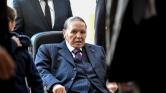 Örömünnep Algériában Bouteflika lemondása miatt