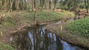 60 éve kiszáradt, most újraéledt egy folyó Angliában