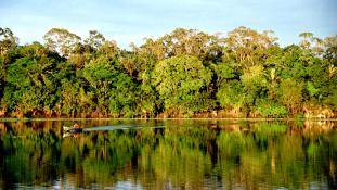 Nős férfiakat is pappá szentelnek Amazóniában