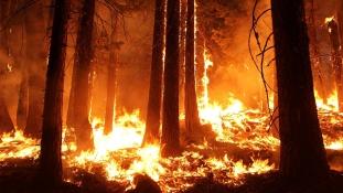 Erdőtüzek Oroszországban: már Belgium méretű terület lángol Szibériában