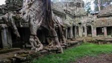 Rejtélyes ősi várost fedeztek fel a dzsungelben Kambodzsában