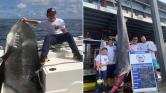 314 kilós cápát fogott egy kisfiú Ausztráliában