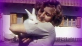 4500 dollárt fizettek Eva Braun bugyijáért