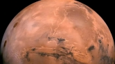 Van élet a Marson – rovarszerű lények a NASA fotóin