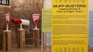 Vaginamúzeum nyílt Londonban