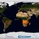 Így lángolt a Föld 2019-ben – videó