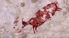 44 ezer éves festményt találtak Celebeszen