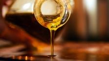 Veszélyben az olívaolajunk: lepra pusztítja a fákat