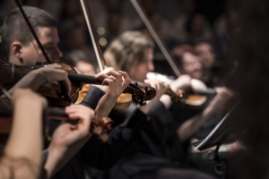 classical-music-concert-macro-music-wallpaper-preview